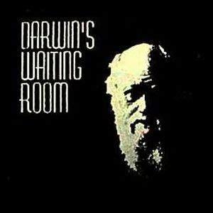 darwin s waiting room mocho varios darwin s waiting room mega