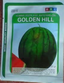 Jual Bibit Buah Semangka semangka tanpa biji golden hill bibit unggul