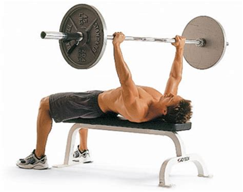 bench press with bar or dumbbells build the perfect chest men s health singapore