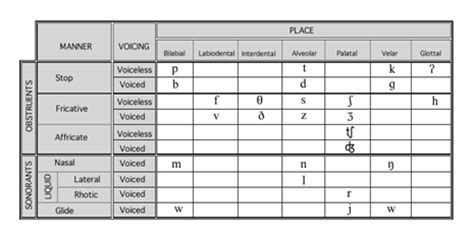 phonological processes worksheets table 2 phonological processes
