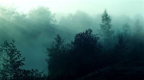download nature themes for windows 10 foggy forest theme for windows 10