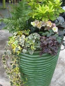 Plant Containers Lenten Container Alabama Gardener Web Articles