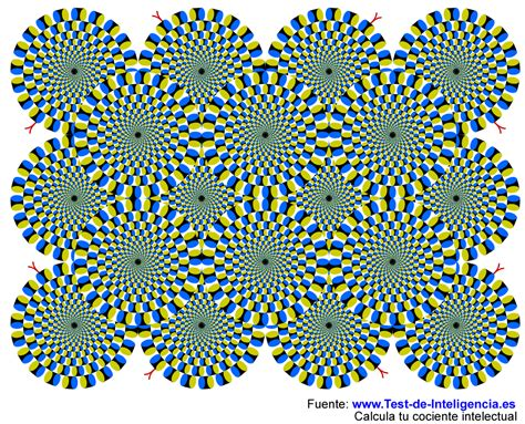 ilusiones opticas test natural science 6 optical illusions