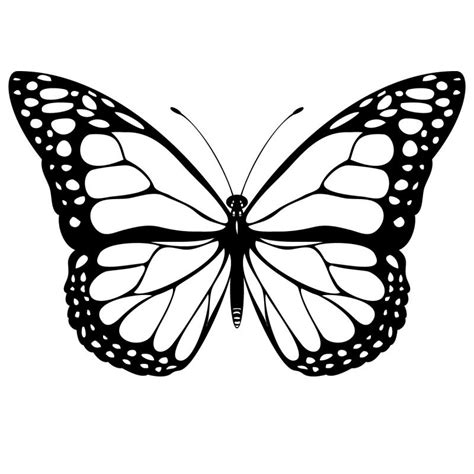 imagenes mariposas gratis mariposas para colorear pintar e imprimir