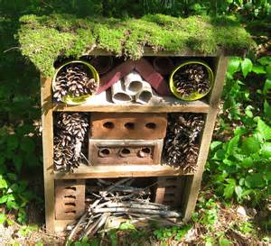 House Plans For View Lots Laura Ladybug S Bug Hotel Review Emma Owl