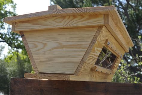 top bar bee hive bees pinterest
