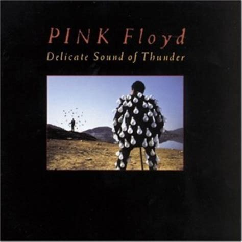 pink floyd comfortably numb delicate sound of thunder delicate sound of thunder pink floyd discografia