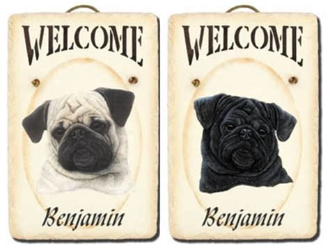 original pug breed original pug breed breeds picture