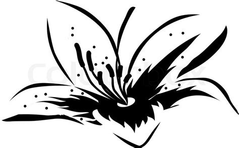 big black and white lily flower icon stock vector