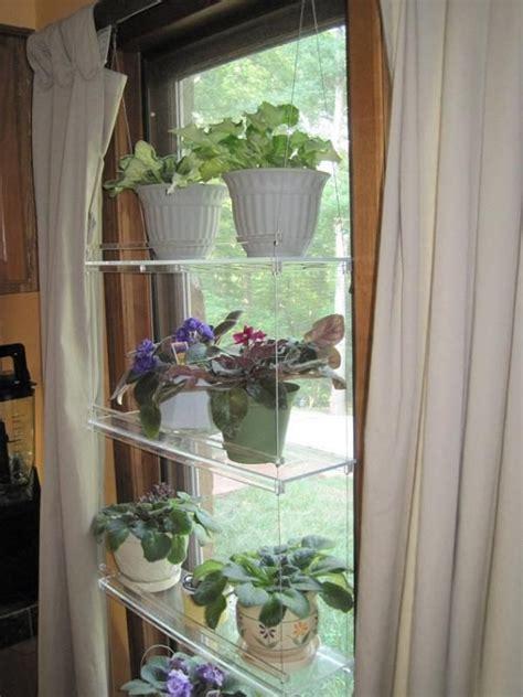bonanza find    ordinary window shelf