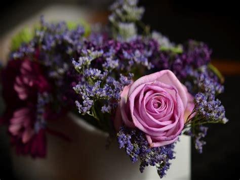 fiori per compleanno mamma fiori da regalare alla mamma per il compleanno invito