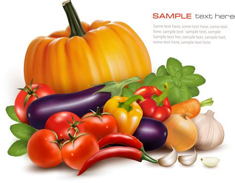 vegetables vector various vegetables vector background vector background