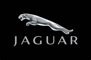 Jaguar Logo Images Jaguar Logo Indian Nerve