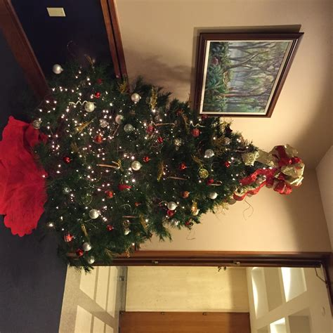cabinet members decorate local christmas trees at state