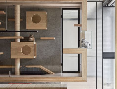 Cat Room Ideas by World S Fanciest Cat Cage Looks Like A Work Of Curbed