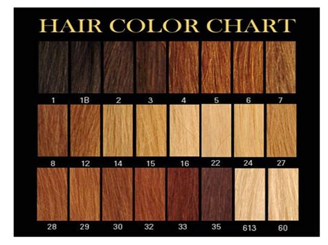 color 2 hair power hair learn which number is your hair colour