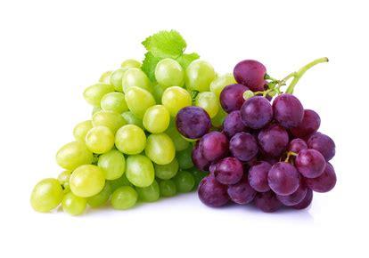 imagenes de uvas reales uvas 191 conoces sus infinitas propiedades