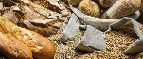 whole grains reddit fiber from whole grains linked to longer