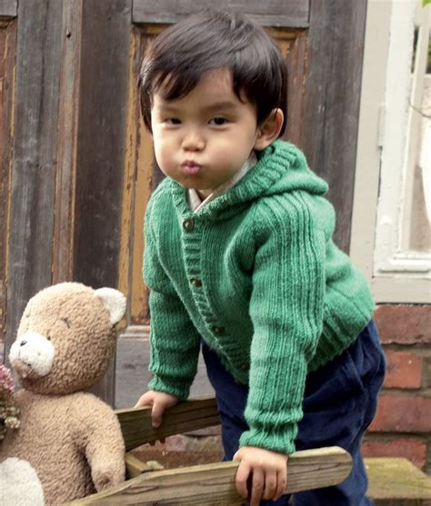 knitting pattern baby sweater with hood 1431 best images about free knitted patterns for babies