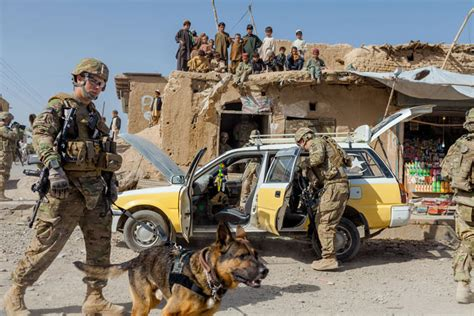 Search Army The Dogs Of War Photo Gallery
