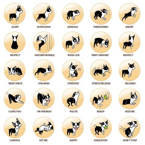 puppy language language 101