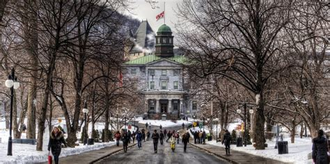 Mcgill Mba Ranking 2017 by Mcgill Desautels Faculty Of Management