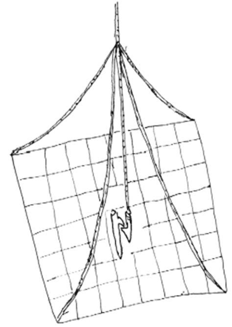 gabbie trappola per uccelli trappola