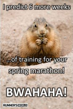 groundhog day running time in honor of groundhog day our own critter has a