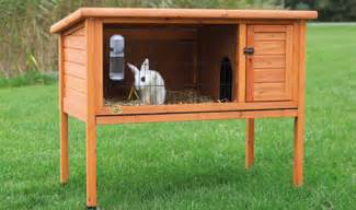 rabbit lives in a hutch constructing rabbit hutches sustainable futures