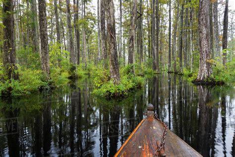 free boats south carolina usa south carolina cypress gardens boat bow in cypress