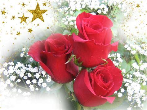 imagenes rosas de navidad fondos de navidad feliz navidad fondos de escritorio