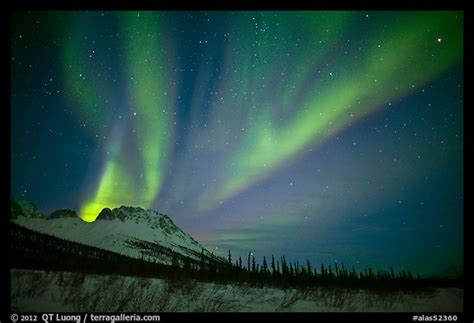 picturephoto aurora borealis  starry night sky
