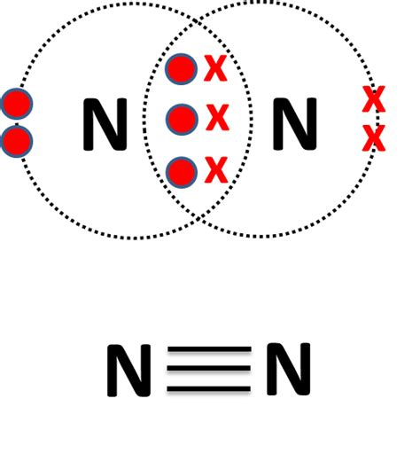 dot diagram for nitrogen nitrogen dot diagram nitrogen gas lewis dot elsavadorla