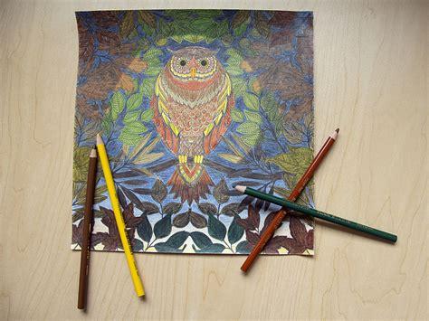 secret garden coloring book books a million how coloring books became a million dollar trend