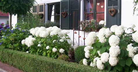 schmaler garten awesome schmaler vorgarten ideen photos house design