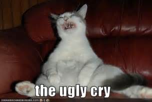 Crying Cat Meme - ugly cry wordsofthewises