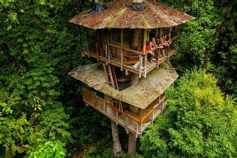 casa arbol hotel las 20 mejores casas en 225 rboles mundo jardines con alma