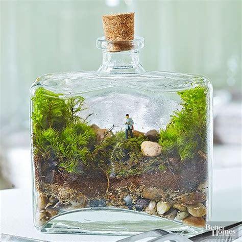 cool terrarium ideas   simply amazing