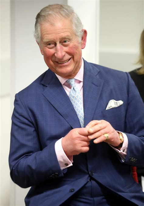 prince charles prince charles photos photos the prince of wales and