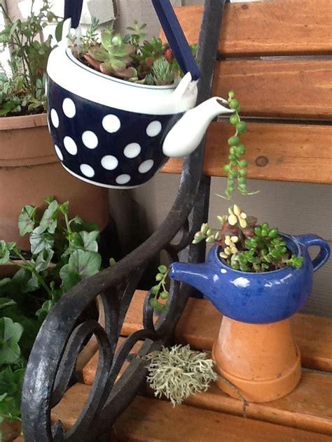 teapot succulent planters succulants pinterest planters gardens  succulent containers