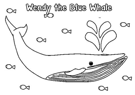 coloring page of a blue whale blue whale clipart coloring page