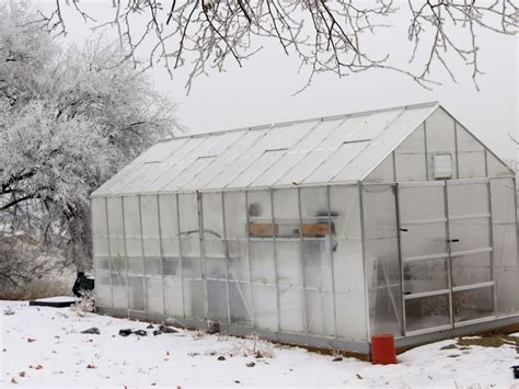 winter greenhouse gardening easygrow gardening easy growing for black thumb