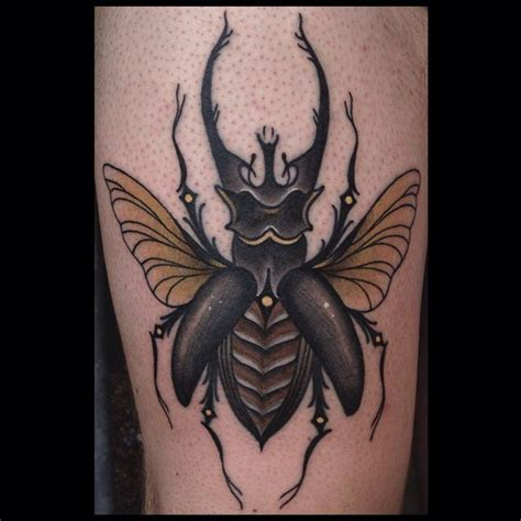 mosquito tattoo 58 best neo traditional images on animal