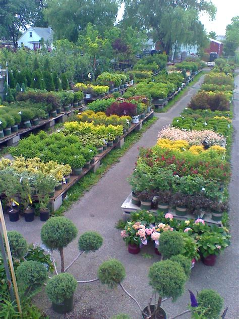 clarkes garden center  lynwood il family owned