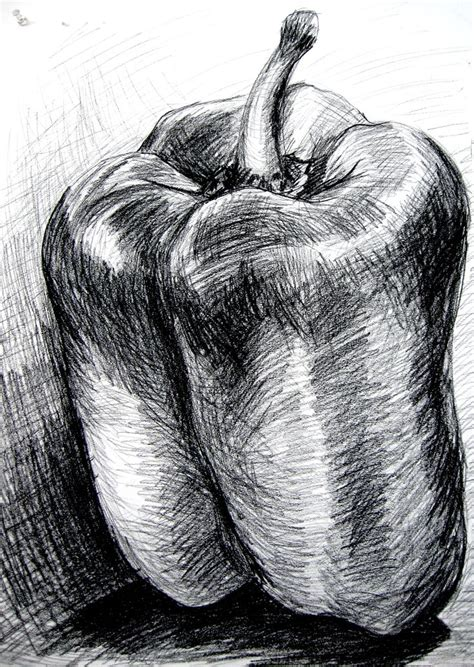 Organic Sketchy Lines by Bell Pepper Charcoal Drawings
