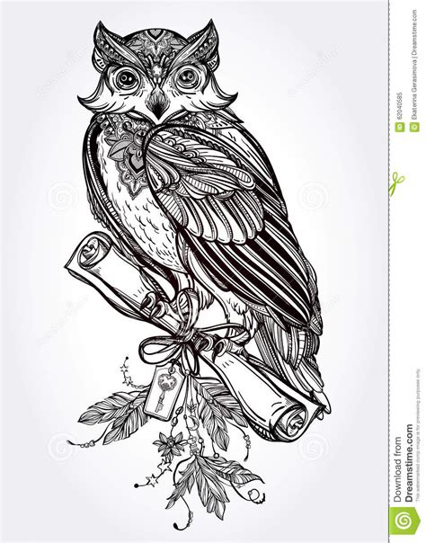hand drawn vintage owl with a letter manuscript stock