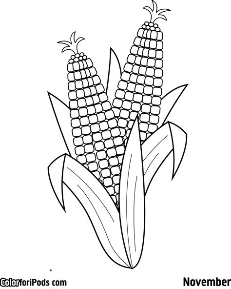 Free Coloring Pages Of Baby Corn Corn Color Page