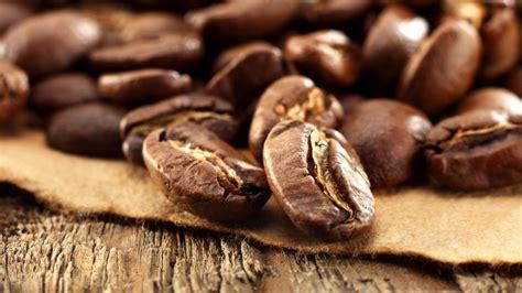 coffee seed wallpaper coffee bean water drops macro photo wallpaper 2560x1600