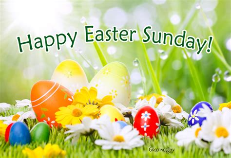 happy easter wishes greeting cards for every day