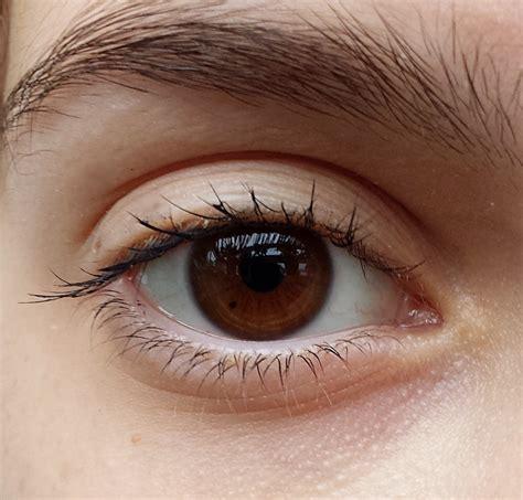 Eyeshadow Daily no makeup look for brown mugeek vidalondon